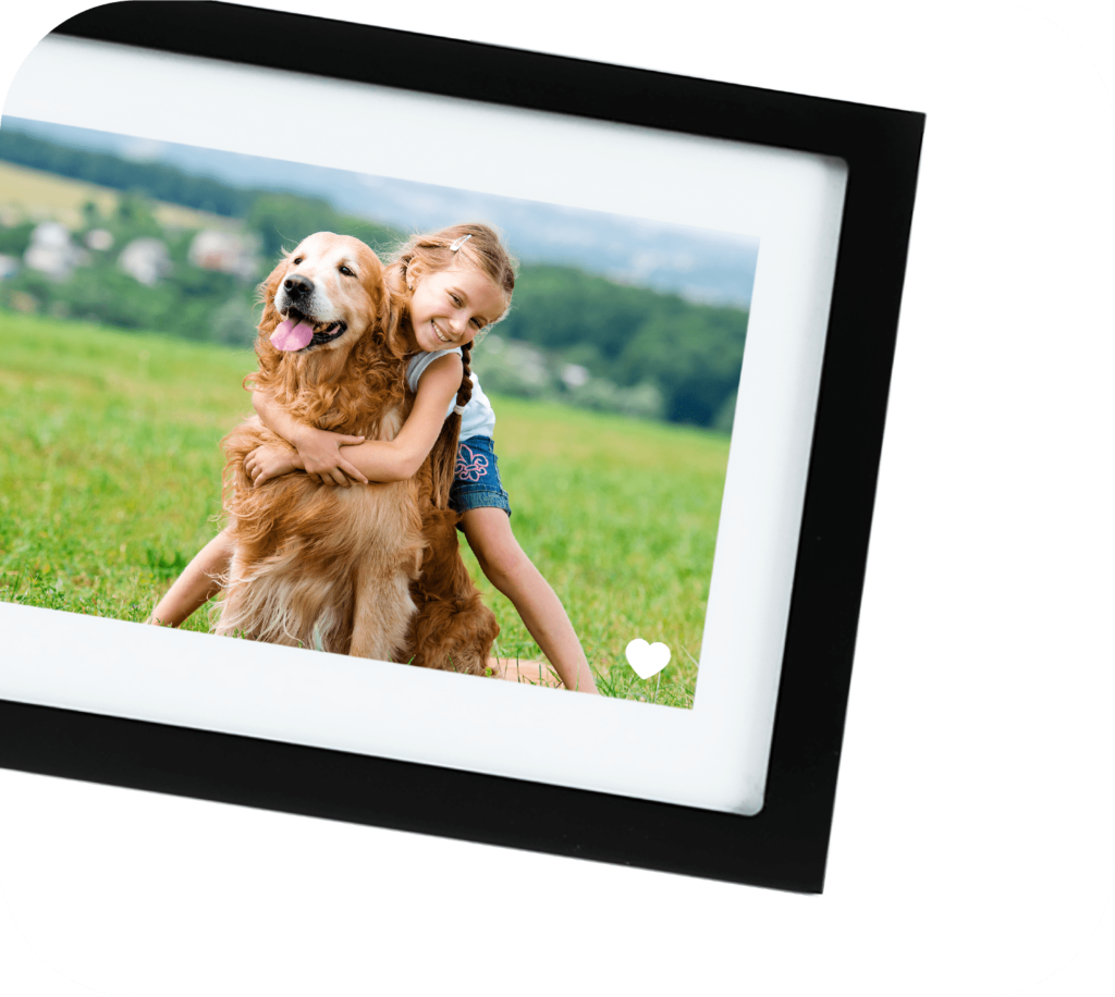 Skylight Frame Reviews: the best WiFi picture frame? 10